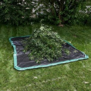 Drawstring tarp for yard cleanup