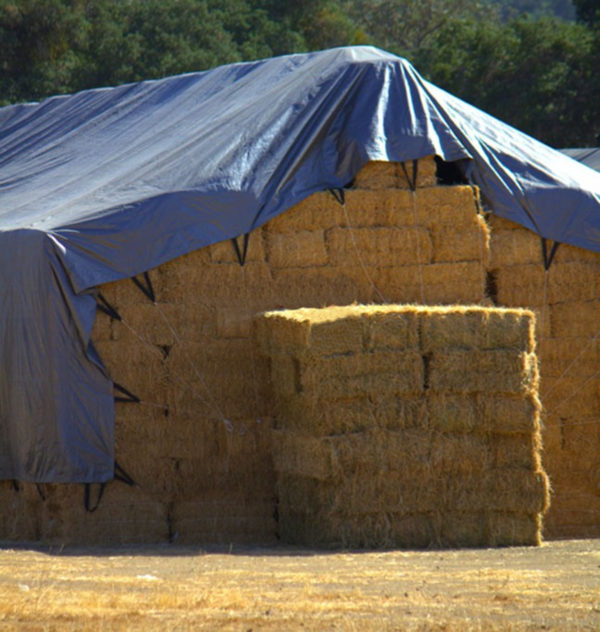 Super Strong poly tarp for covering hay.